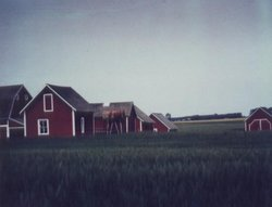 Alberta Farm Buildings